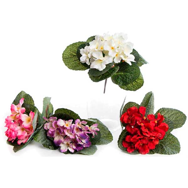 Цветы, гортензия цветы купить минск