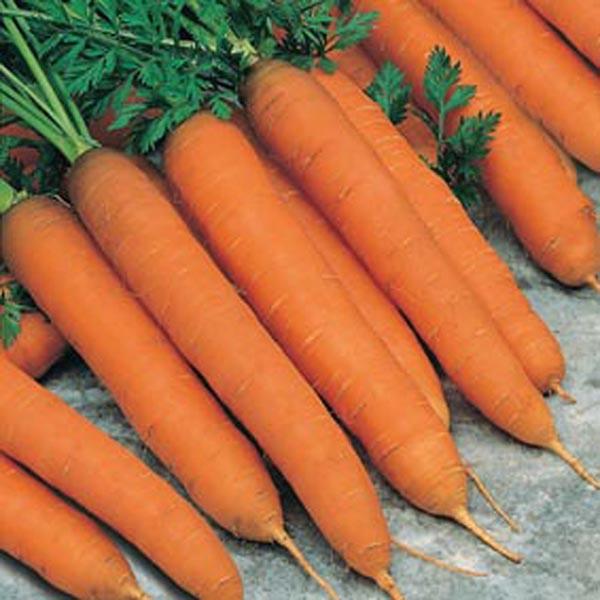 Сем Морковь без Сердцевины НД  - купить со скидкой